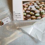 リトープス種からの育て方|種からの多肉植物生育日記①