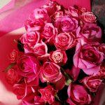 花束のバラの品種と特徴|見た目の印象と分類を比較してみる