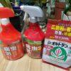 厄介な害虫【害虫対策】薬剤をあまり使わない撲滅法
