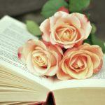 新しいバラ苗が欲しい!カタログで新しいバラ苗を物色する
